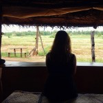 Restaurant with a view padi fields of Sri Lanka touristhellip